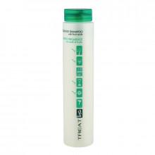 Ing Professional Шампунь для ежедневного использования Frequence Shampoo