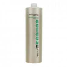 Ing Professional Treat Шампунь бивалентный двойного действия против перхоти для жирной кожи голови