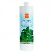 Alter Ego Шампунь с ментолом для глубокого очищения Classic Deep Cleansing Refreshing Shampoo