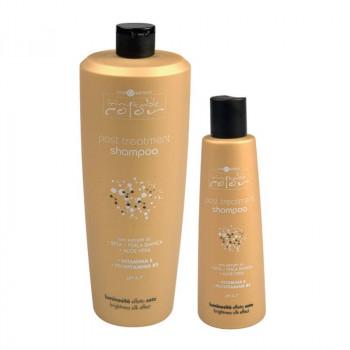 Hair Company Шампунь для волос с экстрактом шелка и алоэ вера Inimitable Color