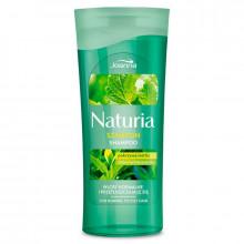 Joanna Шампунь для нормальных и жирных волос с крапивой и зеленым чаем Naturia - Для нормальных волос (арт.23494)