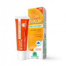 Natura House Бальзам для губ с экстрактом прополиса и мёда Nourishing Lip Balm